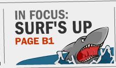 in-focus-surfs-up