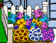 new-flowers